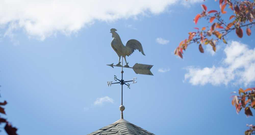 biểu tượng con gà